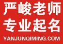 西安起名公司严峻《起名改名服务流程》